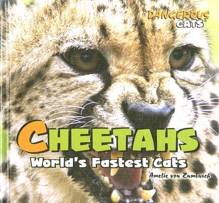 Cheetahs By Zumbusch, Amelie Von